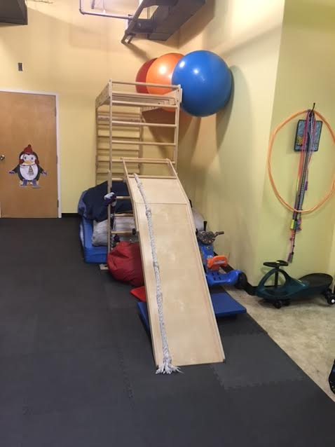 Sensory Gym Monkey Bars and Ramp